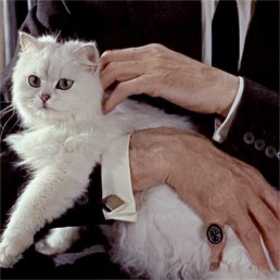 Anthony Dawson as Blofeld in From Russia With Love